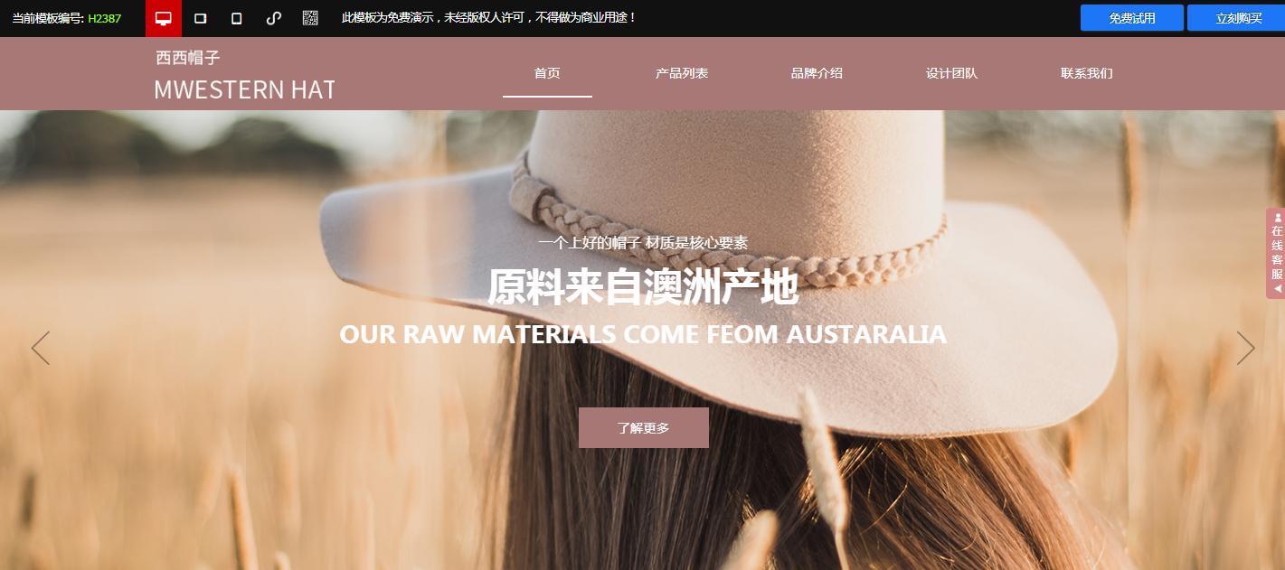 服装鞋帽,网站建设